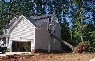 Veszélyes fa a ház mellett