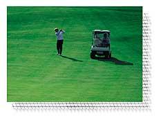 Golfpályák alá is